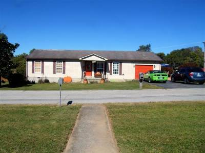 Carter County Single Family Home For Sale: 541 Jordan Court
