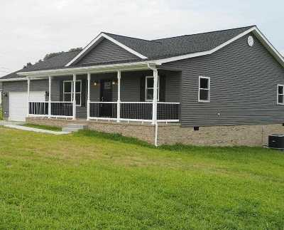 Carter County Single Family Home For Sale: 640 Promise Land