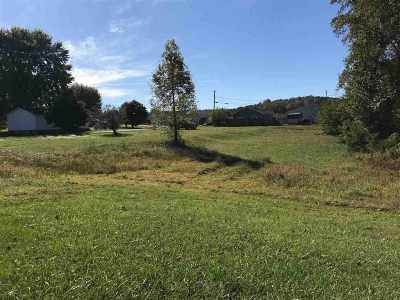 Greenup County Residential Lots & Land For Sale: Farmhill Drive, Lots 28,29,30,31