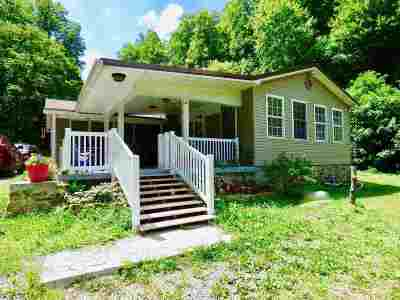 Greenup County Single Family Home For Sale: 133 Cumberland Road