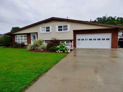 Lawrence County Single Family Home For Sale: 105 Orchard Drive