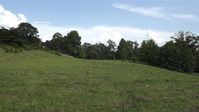 Greenup County Residential Lots & Land For Sale: Richard Drive