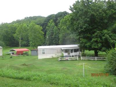 Carter County Single Family Home For Sale: 2490 Davy Run Road
