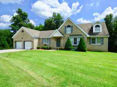 Catlettsburg Single Family Home For Sale: 8628 Southview Court