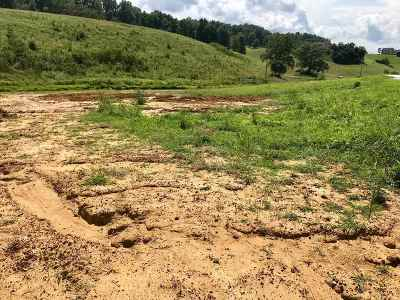 Carter County Residential Lots & Land For Sale: 49 Arabian Way