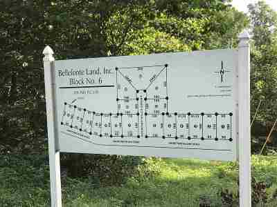 Greenup County Residential Lots & Land Active-Back On Market: 6 Short White Oak