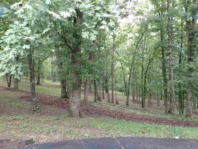 Greenup County Residential Lots & Land For Sale: 283 Mt. Zambos Lane