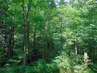 Carter County Residential Lots & Land For Sale: 1620 (Thompson Br)