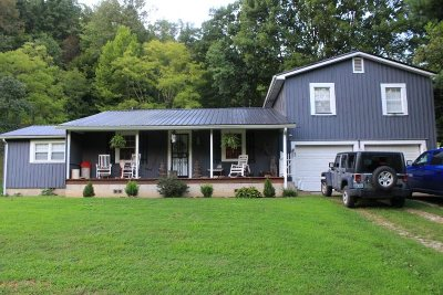 Catlettsburg Single Family Home For Sale: 714 Brushy Fork Rd