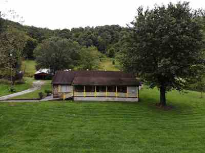 Catlettsburg Single Family Home For Sale: 557 Brushy Fork Road