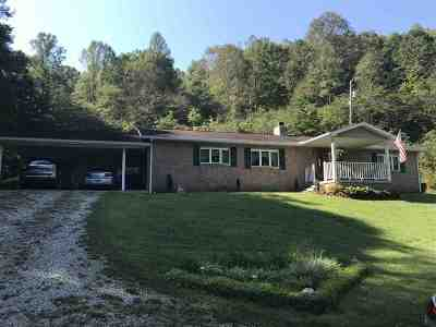 Carter County Single Family Home For Sale: 250 Day Road