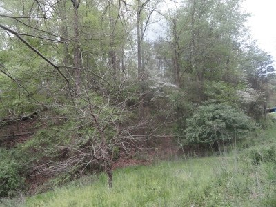 Greenup County Residential Lots & Land For Sale: Sawpit Rd