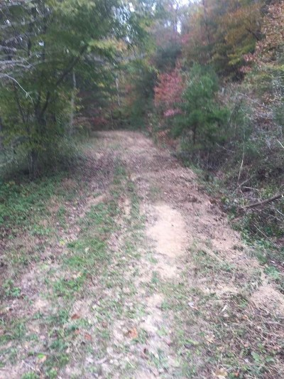 Carter County Residential Lots & Land For Sale: Kiser Road & Stan Branch