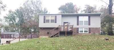 Ashland Single Family Home For Sale: 7900 Ester Court