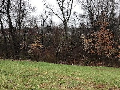 Ashland Residential Lots & Land For Sale: Shelby Avenue