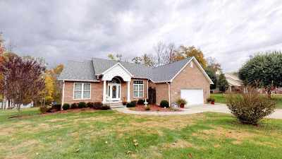 Carter County Single Family Home For Sale: 302 Riverwood Drive