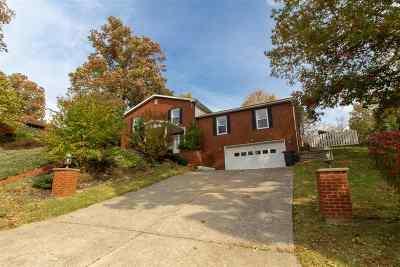 Ashland Single Family Home For Sale: 296 Bellefonte Circle