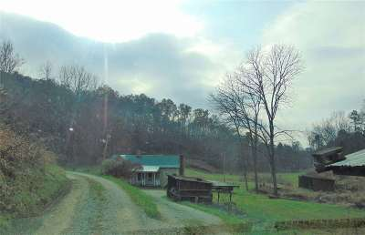 Carter County Single Family Home Active-Back On Market: 79 Tal Road