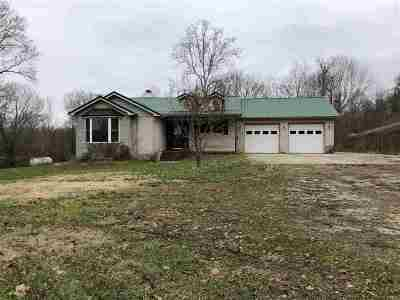 Greenup County Single Family Home For Sale: 257 Kagley Road