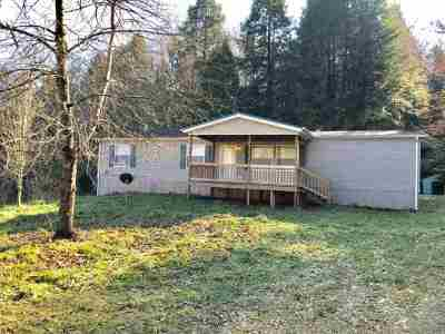 Carter County Single Family Home For Sale: 4294 Aden Road