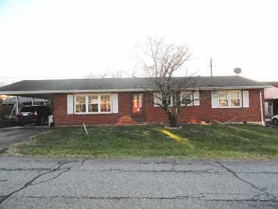 Greenup County Single Family Home For Sale: 913 Brenda Sue Drive