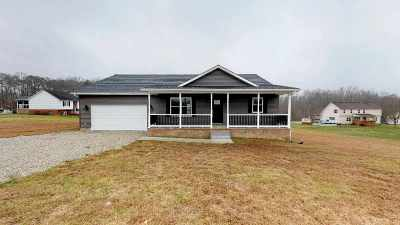Carter County Single Family Home For Sale: 640 Promise Land Drive