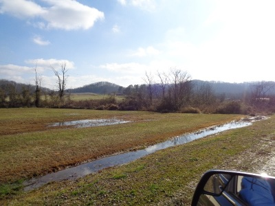 Greenup County Residential Lots & Land For Sale: Bluebird St