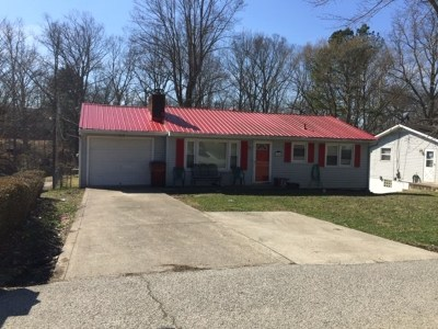 Greenup County Single Family Home For Sale: 1608 Beth Ann Drive