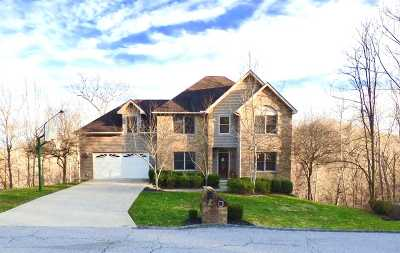 Greenup County Single Family Home For Sale: 3030 Fox Ridge Court