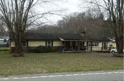 Greenup County Single Family Home For Sale: 3864 State Route 503
