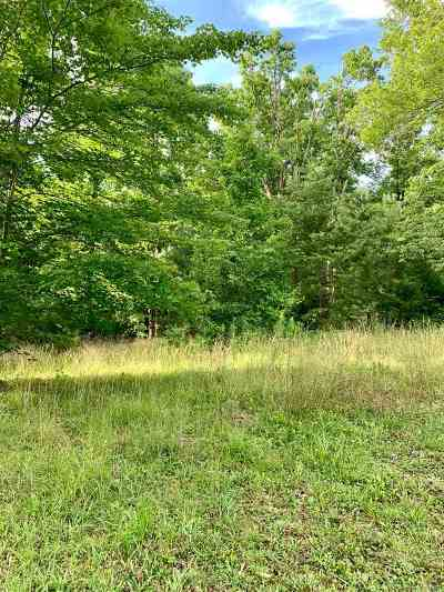 Carter County Residential Lots & Land For Sale: N Sand Ridge, Lot 18 & 19