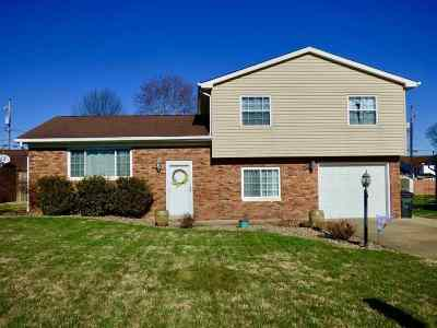 Lawrence County Single Family Home Pending-Continue To Show: 45 Township Road 1434