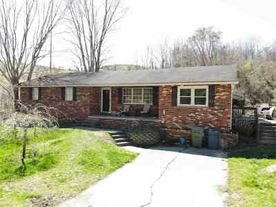 Ashland Single Family Home For Sale: 920 N Big Run Road
