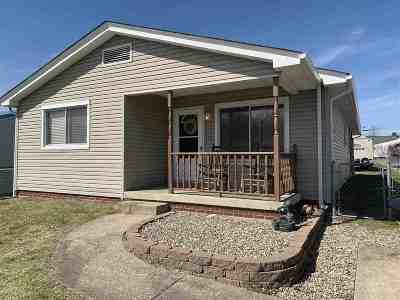 Greenup County Single Family Home For Sale: 73 Altawood Road