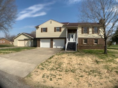 Greenup County Single Family Home For Sale: 1633 Gainesway Drive