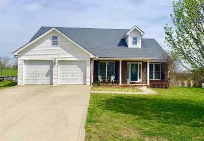 Catlettsburg Single Family Home For Sale: 5044 Lakin Drive