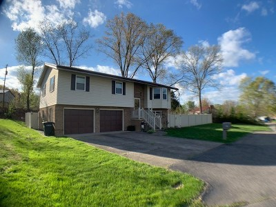 Greenup County Single Family Home For Sale: 2913 New Haven Court
