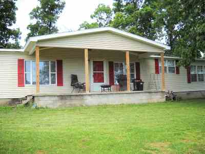 Greenup County Single Family Home For Sale: 141 Marvin Hill
