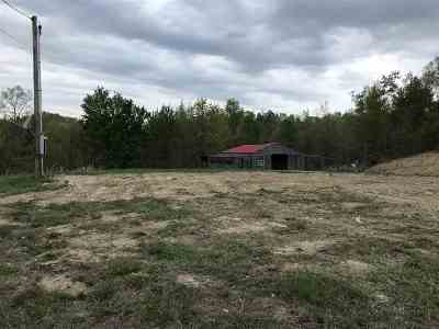Carter County Residential Lots & Land For Sale: 517 Horseshoe Drive