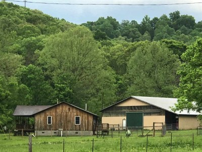 Greenup County Single Family Home For Sale: 660 Deer Valley Road