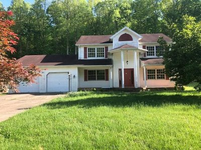 Greenup County Single Family Home For Sale: 681 Short White Oak