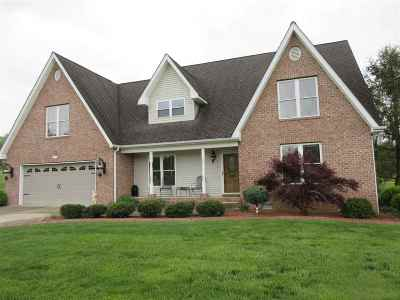 Carter County Single Family Home For Sale: 294 Greenbriar Drive