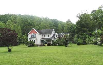 Catlettsburg Single Family Home For Sale: 1144 Brushy Fork Road