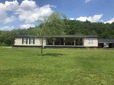 Carter County Single Family Home For Sale: 13399 State Route 2
