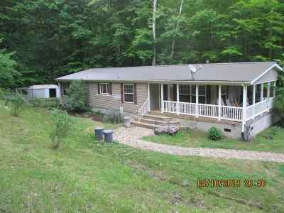 Carter County Single Family Home For Sale: 675 Stinson Creek Road