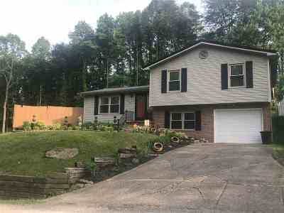 Lawrence County Single Family Home For Sale: 108 C Street