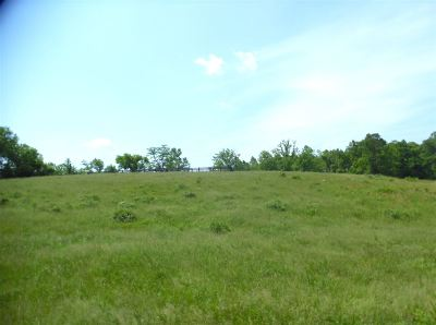 Carter County Residential Lots & Land For Sale: Tygarts Creek Road