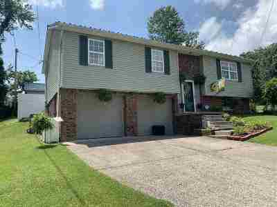 Greenup County Single Family Home For Sale: 1502 Patterson Street