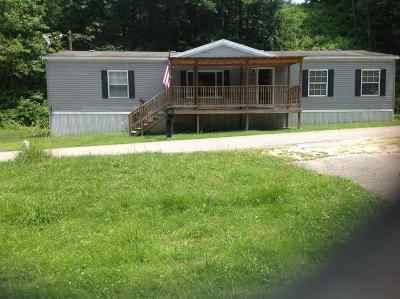 Greenup County Single Family Home For Sale: 905 Heaberlin Road