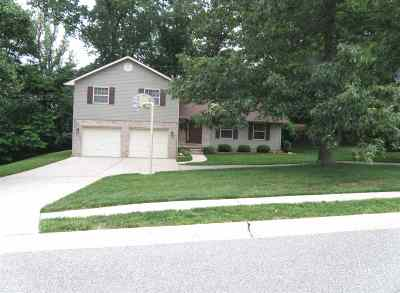 Greenup County Single Family Home For Sale: 603 Windsor Lane
